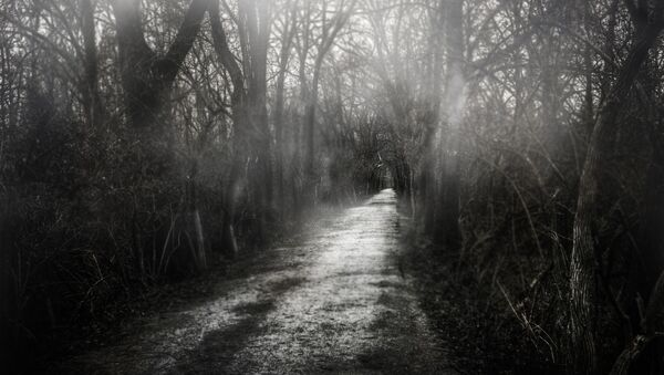 Spooky forest - Sputnik Mundo