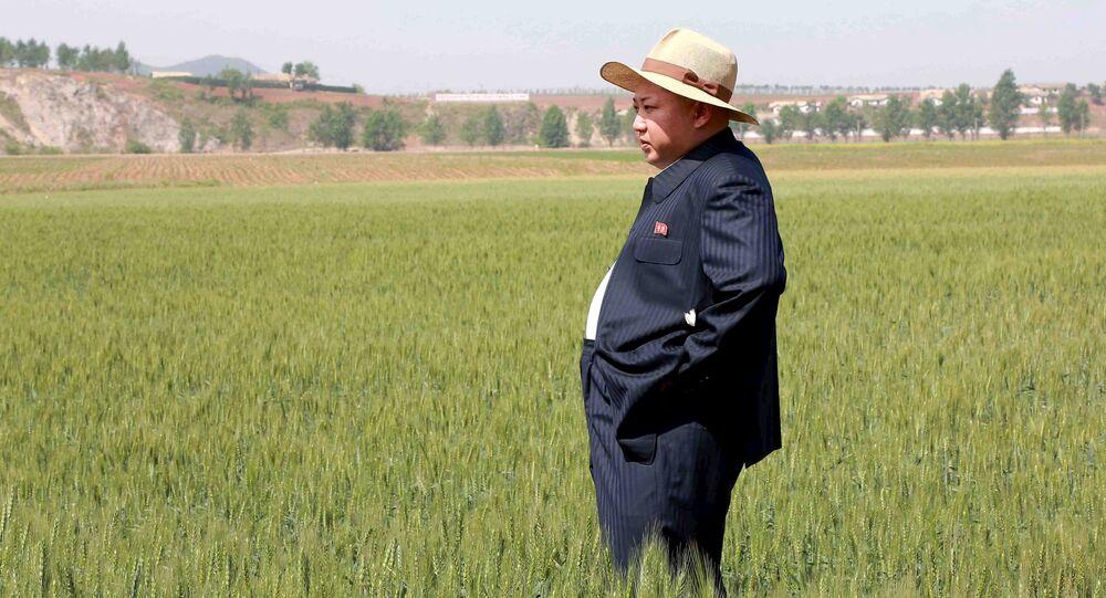 Líder de Corea del Norte, Kim Jong-un, en una granja (archivo)
