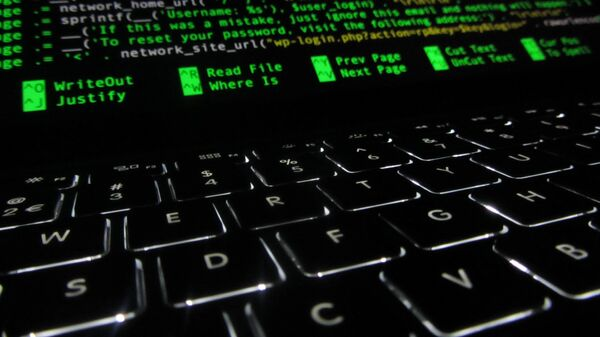 La seguridad en el ciberespacio - Sputnik Mundo