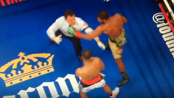 Boxeador sueco casi noquea al juez - Sputnik Mundo