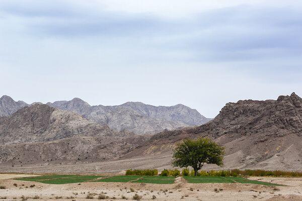 La maravillosa ciudad oasis en un desierto iraní - Sputnik Mundo