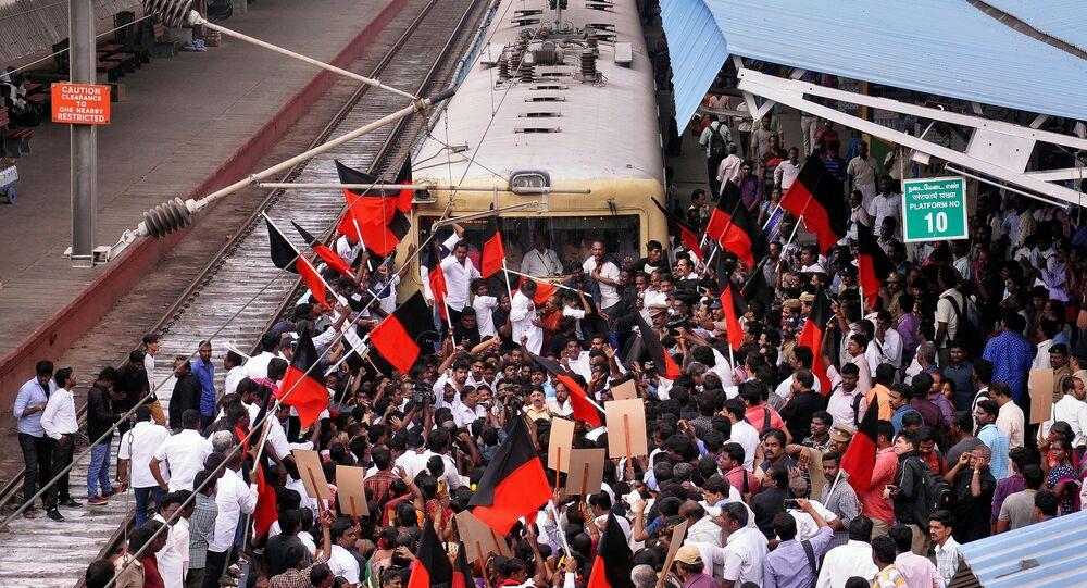 Protestas contra la prohibición de la tradición India Jallikattu