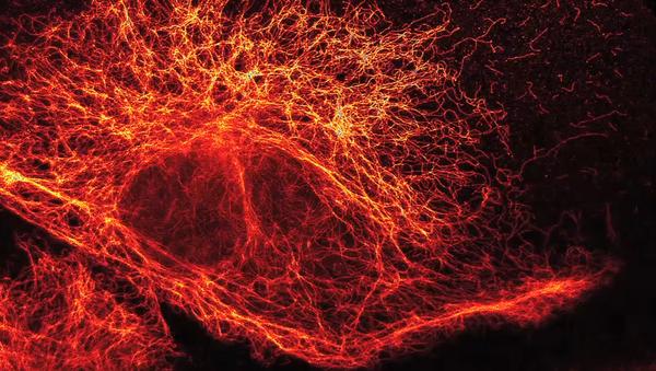Partículas elementares vistas a través de un súper microscopio de alta resolución - Sputnik Mundo
