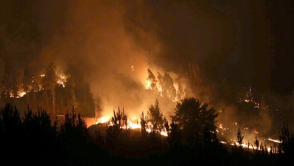 Incendio forestal en Chile (Archivo) - Sputnik Mundo