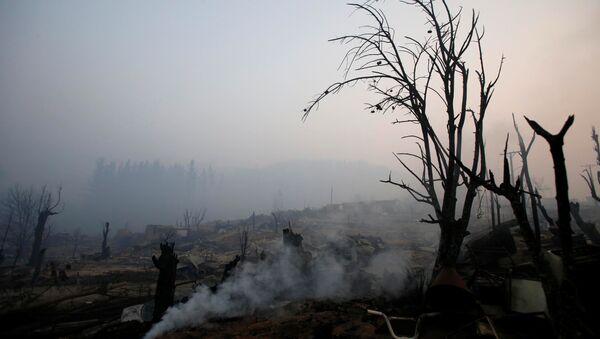 Consecuencias de los incendios forestales en Chile - Sputnik Mundo