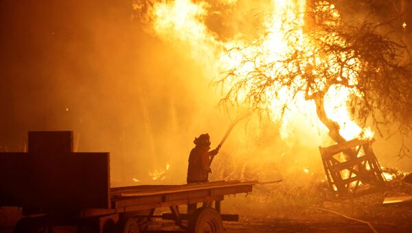 A firefighter tries to stop wildfires in Chile's central-south regions, in Portezuelo, Chile January 30, 2017 - Sputnik Mundo