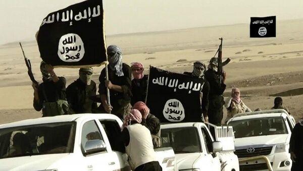 Yihadistas de Daesh (archivo) - Sputnik Mundo