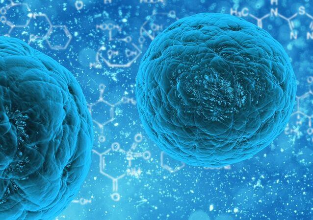Células (imagen referencial)