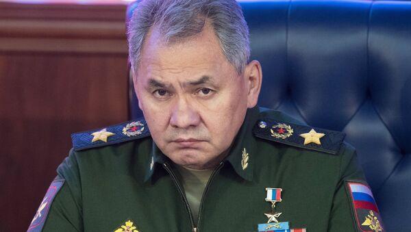 El ministro de Defensa de Rusia, Serguéi Shoigú - Sputnik Mundo