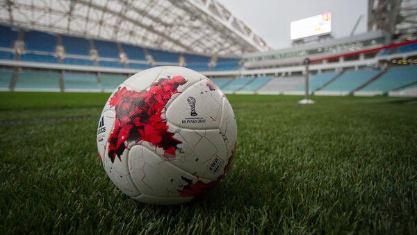 Estadio Olímpico de Sochi - Sputnik Mundo