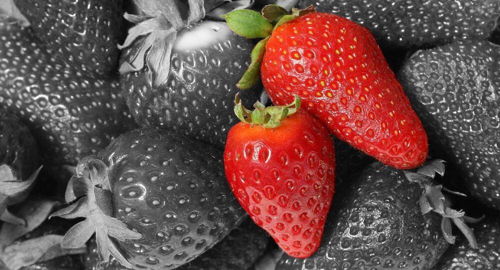 Fresas (imagen referencial)