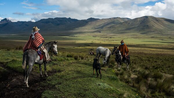 Vaqueros en la foto de Luis Fabini - Sputnik Mundo