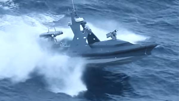 Bote no tripulado israelí Protector (archivo) - Sputnik Mundo