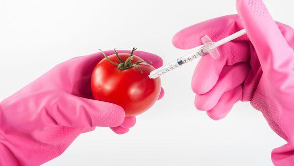 OGM (imagen referencial) - Sputnik Mundo