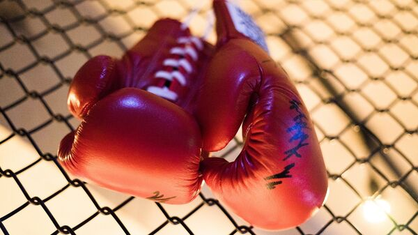 Guantes de boxeo - Sputnik Mundo