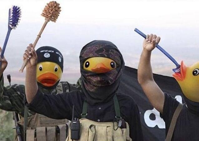 Patos de Daesh (archivo)