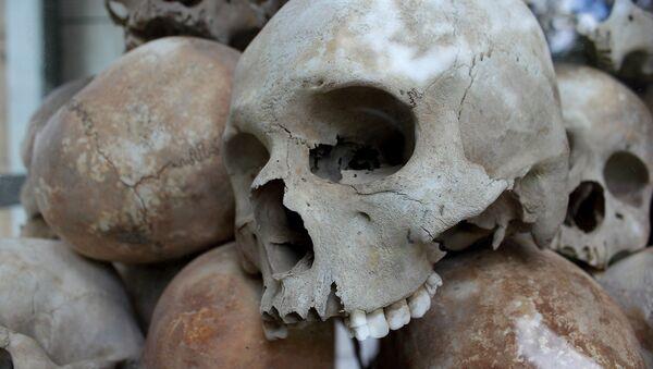 Cráneos (Archivo) - Sputnik Mundo