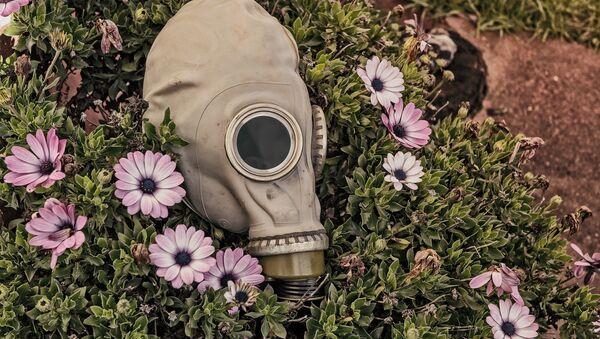 Máscara antigás - Sputnik Mundo