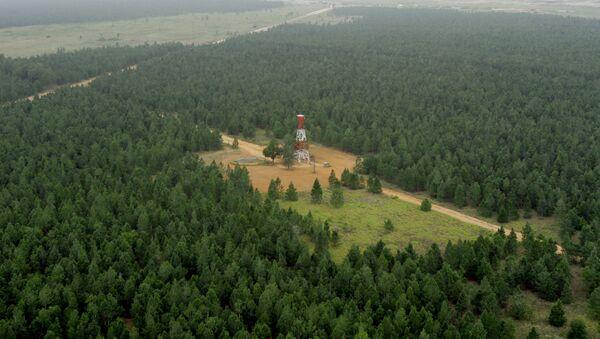 Venezuela posee el bosque forestal más grande del mundo, creado por el hombre - Sputnik Mundo