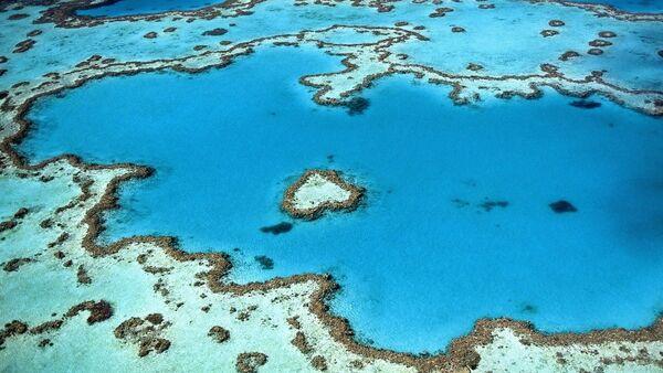Un arrecife coralino (archivo) - Sputnik Mundo