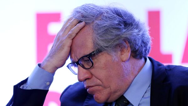 Organization of American States (OAS) Secretary-General Luis Almagro gestures during the Democratic Solidarity in Latin America meeting organised by Forum 2000 Foundation in Mexico City - Sputnik Mundo