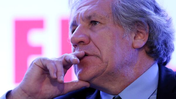 Organization of American States (OAS) Secretary-General Luis Almagro gestures during the Democratic Solidarity in Latin America meeting organised by Forum 2000 Foundation in Mexico City, Mexico - Sputnik Mundo