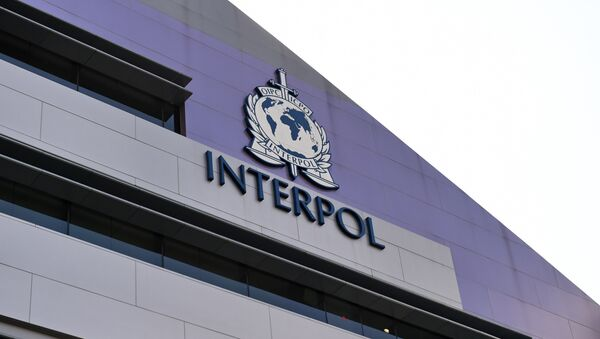 A logo at the newly completed Interpol Global Complex for Innovation building is seen during the inauguration opening ceremony in Singapore on April 13, 2015. The Interpol Global Centre for Innovation opened its doors with officials hoping it will strengthen global efforts to fight increasingly tech-savvy international criminals. - Sputnik Mundo