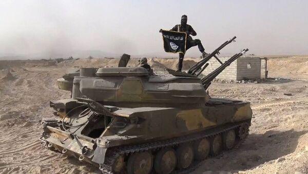 Un terrorista de Daesh en Siria (archivo) - Sputnik Mundo