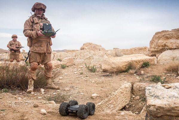 Zapadores rusos desminan Palmira. - Sputnik Mundo