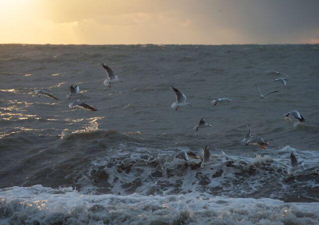 Mar Negro (imagen referencial)