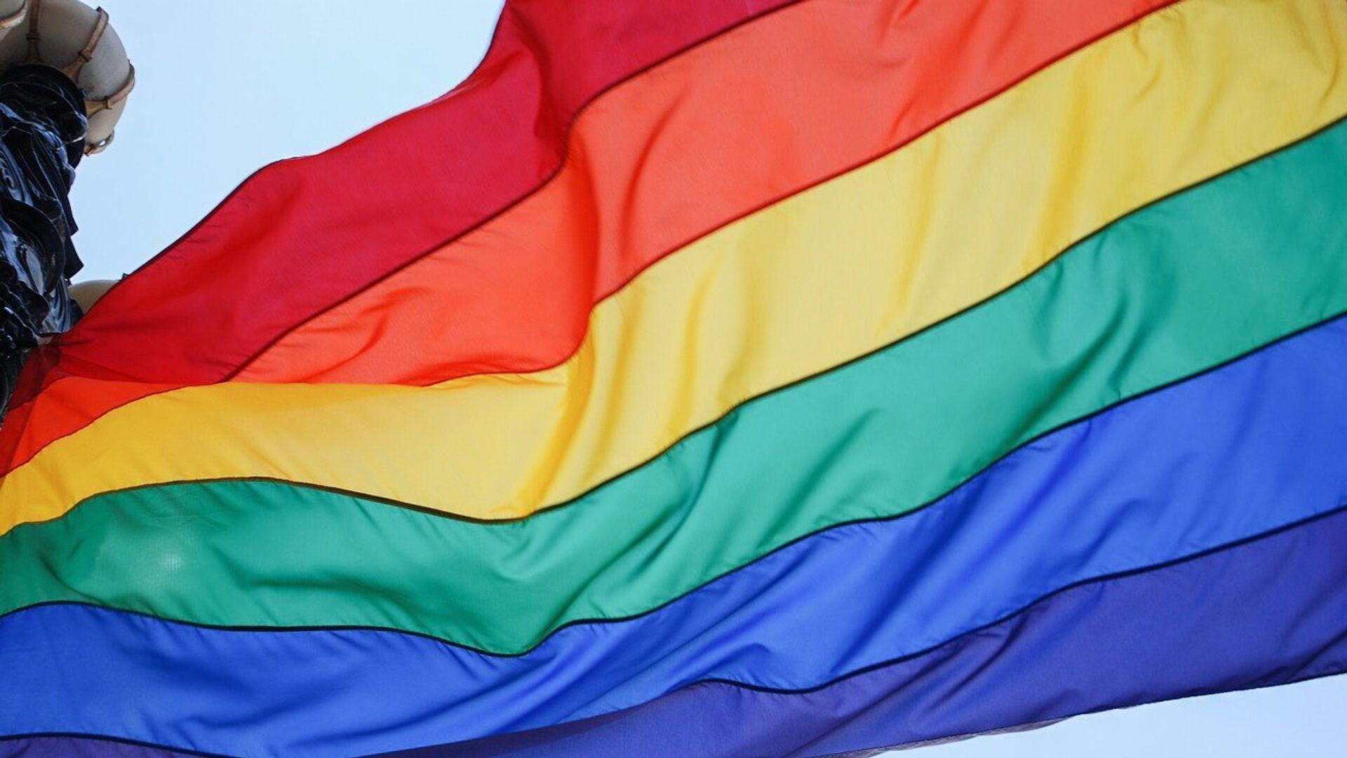 Bandera arcoíris, símbolo del movimiento LGBT - Sputnik Mundo, 1920, 05.02.2020