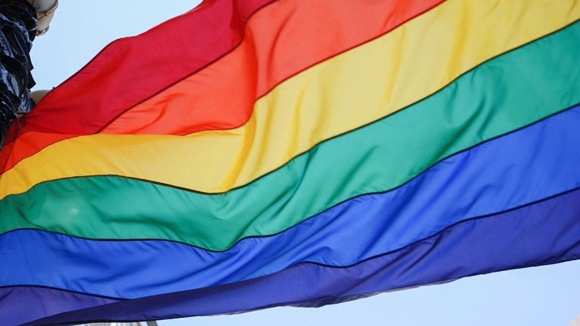 Bandera arcoíris, símbolo del movimiento LGBT - Sputnik Mundo, 1920, 18.05.2021
