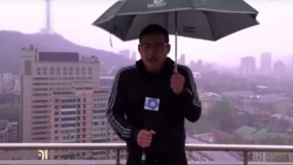 Gajes del oficio: un meteorólogo golpeado por un rayo en pleno reportaje (vídeo) - Sputnik Mundo