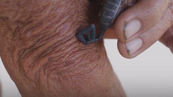 Métodos ancestrales: picaduras de escorpión contra el dolor - Sputnik Mundo