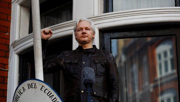 Julian Assange, fundador de Wikileaks, en la embajada de Ecuador en Londres - Sputnik Mundo