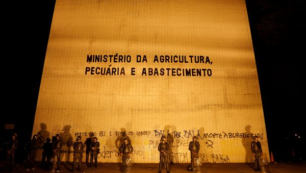 Ministerio de Agricultura de Brasil - Sputnik Mundo