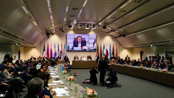 Reunión ministerial en Viena - Sputnik Mundo