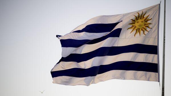Bandera de Uruguay (archivo) - Sputnik Mundo