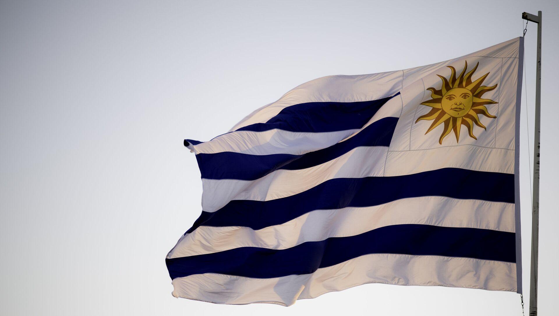 Bandera de Uruguay - Sputnik Mundo, 1920, 30.11.2020