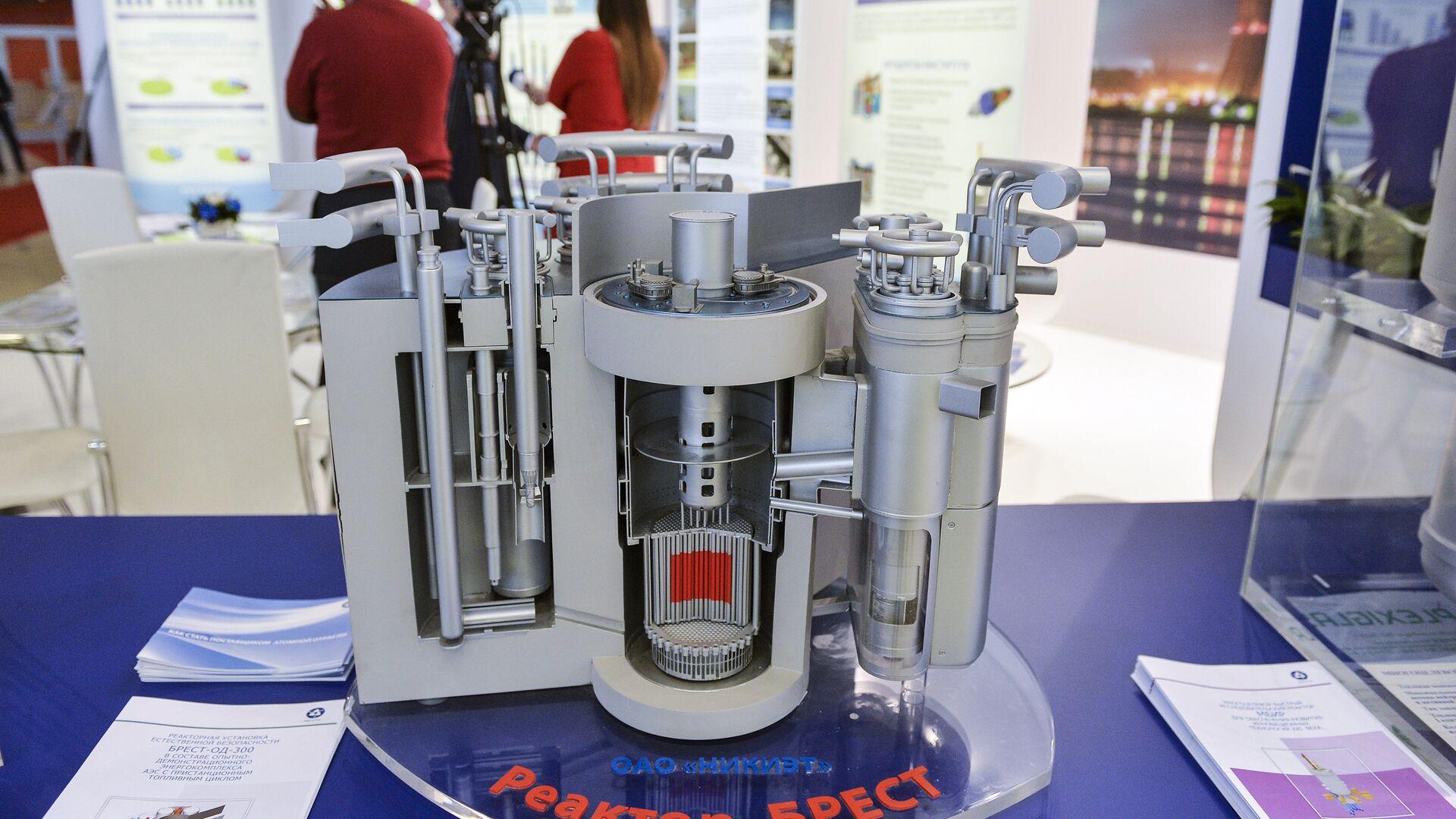 Una maqueta del reactor BREST-300 - Sputnik Mundo, 1920, 08.06.2021