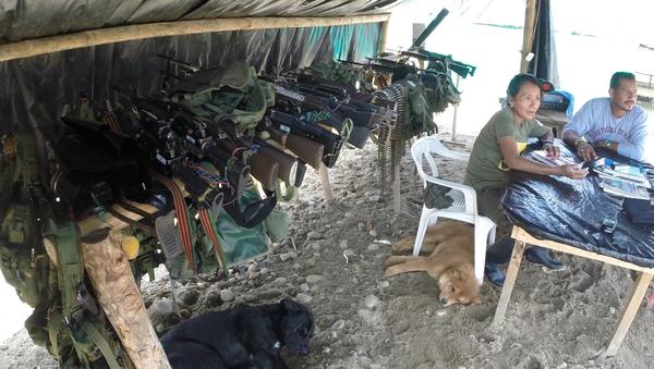 Armamento de las FARC - Sputnik Mundo