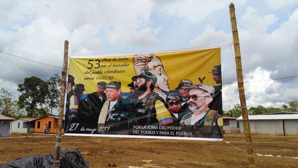 Banner del 53 aniversario de la lucha de FARC-EP - Sputnik Mundo