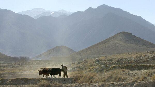 Tora Bora, Afganistán (archivo) - Sputnik Mundo