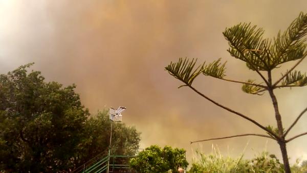 Incendio en Sicilia - Sputnik Mundo