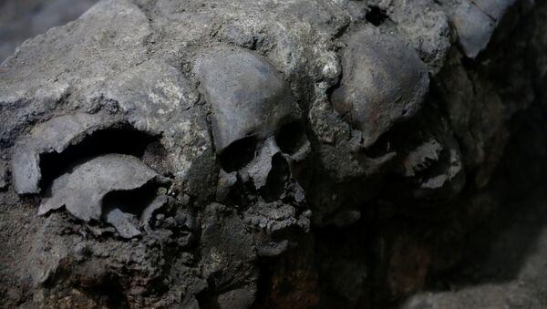 Fragmento de la torre de cráneos descubierta en Ciudad de México - Sputnik Mundo