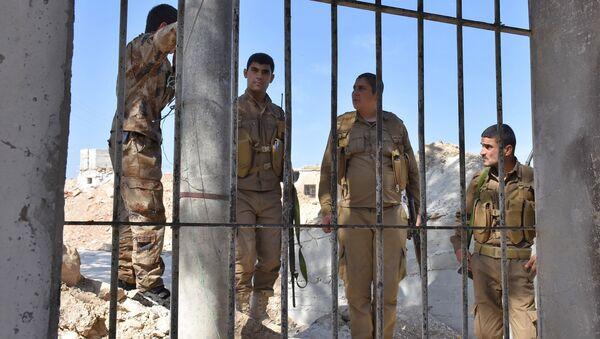 Los combatientes kurdos en Afrin, Siria - Sputnik Mundo
