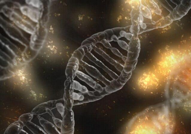 ADN (imagen referencial)