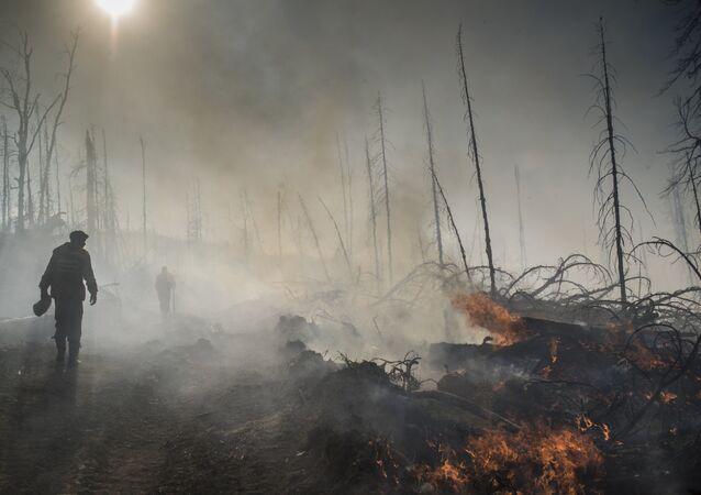 Incendios forestales en Rusia (archivo)