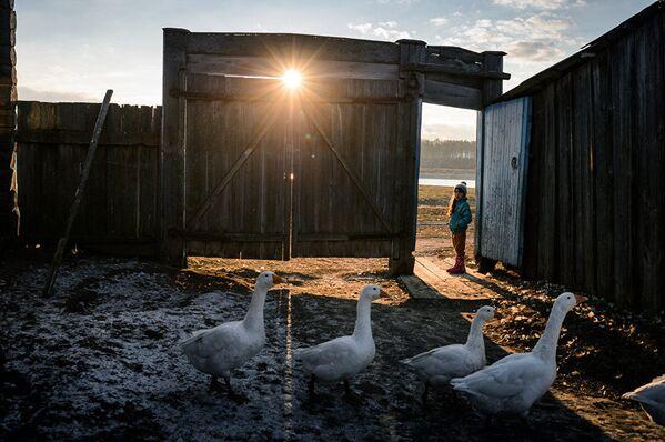 Las instantáneas más impactantes del Concurso de Fotoperiodismo Andréi Stenin - Sputnik Mundo
