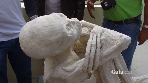 Momia 'extraterrestre' de Perú - Sputnik Mundo